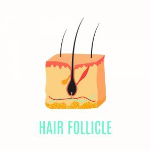 Hair Care Boca Raton